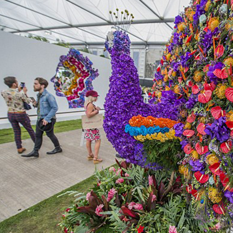 Harvie & Hudson's Practical style guide for the Chelsea Flower Show
