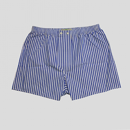 Blue Bengal Stripe Essential Boxer Shorts