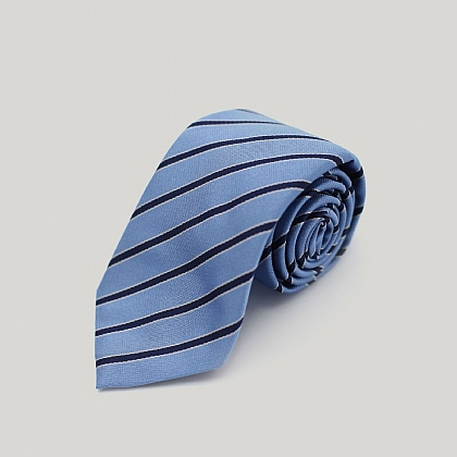 Sky with Navy Stripe Woven Silk Tie