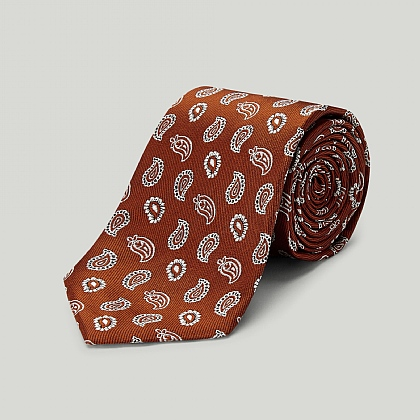 Orange Mono Paisley Wovven Silk Tie