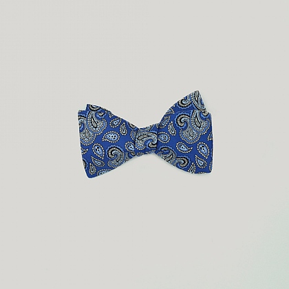 Royal and Sky Paisley Bow