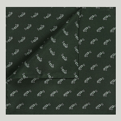 Green Landrover Printed Silk Hank
