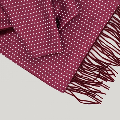 Bordeaux with Navy Reverse Silk Scarf